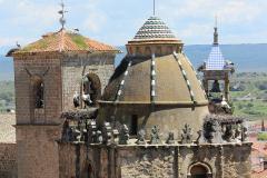 Paulina Lichota - Bocianie gniazda na wieżach kościołów