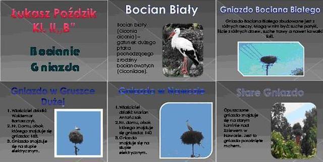 Przykład pracy przygotowanej przez ucznia klasy II b Łukasza Poździka