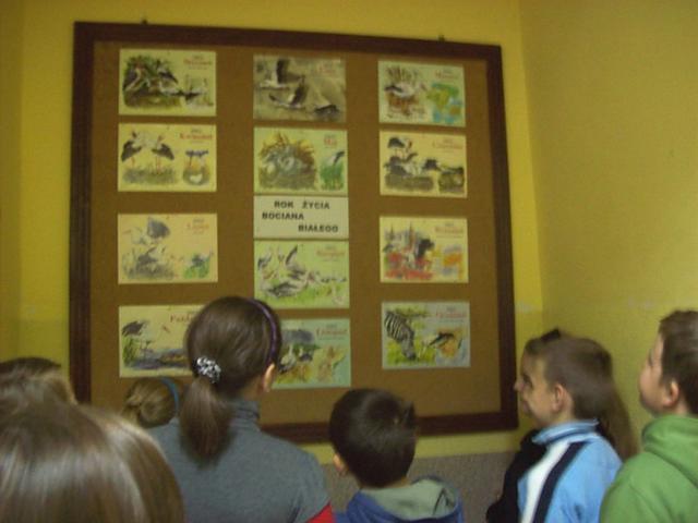 Wystawa 'Rok z życia bociana'