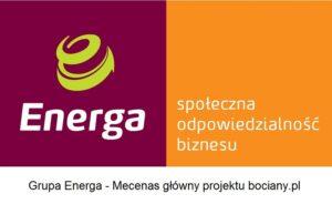Grupa Energa - Mecenas główny projektu bociany.pl